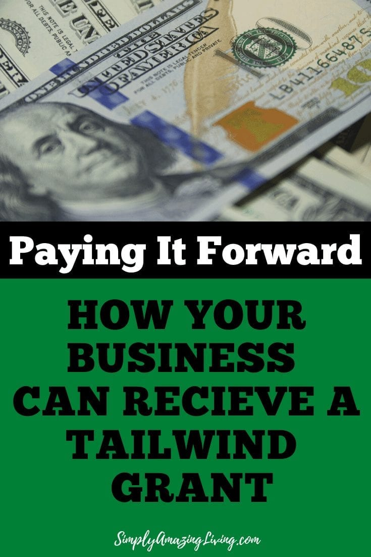 Tailwind App Grant Pin