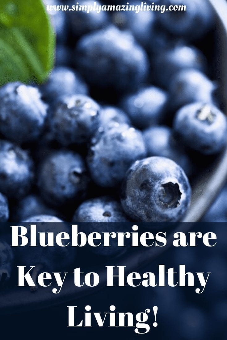 Blueberries are the keky to healthy living post image pin