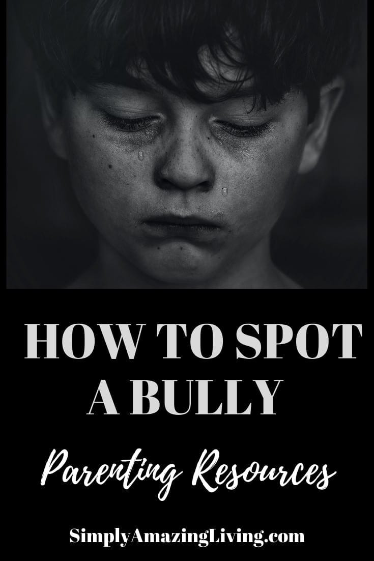 How to Spot a Bully post Pin image