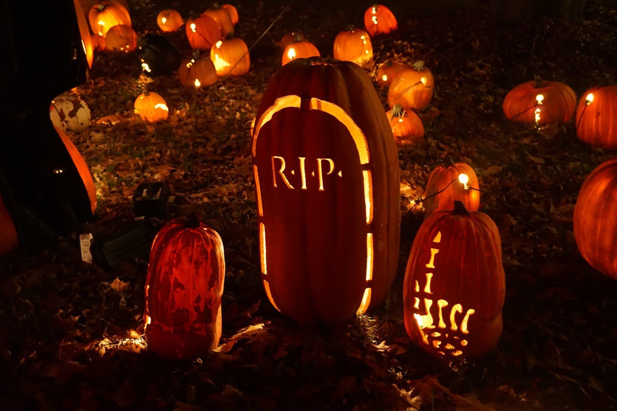 Halloween carved pumkin image